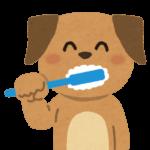 歯磨き粉『子供が食べるのは意外と危険、食べても大丈夫なのは・・・』