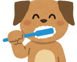 歯磨き粉を食べる